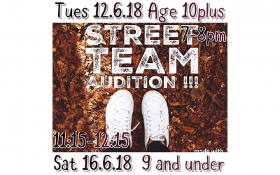 Bodyrockerz Street Crew Auditions!